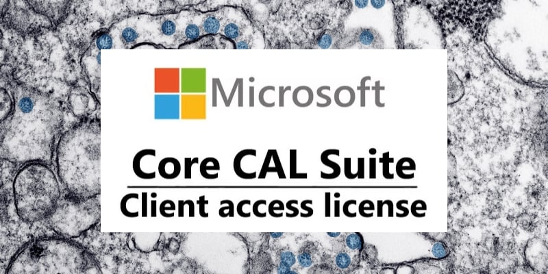 two-main-questions-about-microsoft-client-access-license-cal-what-is-it-and-why-does-it-need