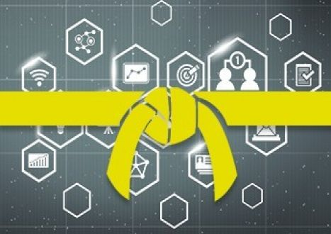 Learning Six Sigma: Yellow Belt