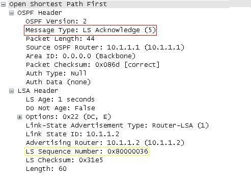 OSPF Packet Types: Description & Explanation