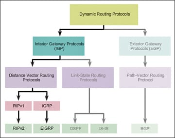 Routing Protocol Types Concepts